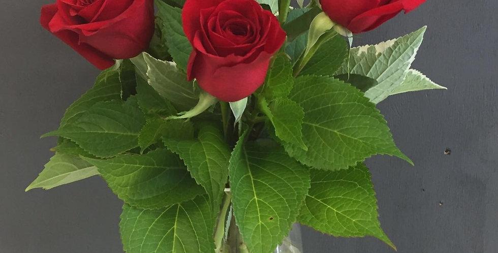 6 Roses in Vase