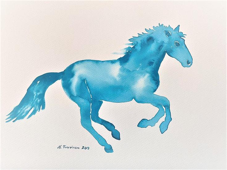 Turquoise Pony (A4)