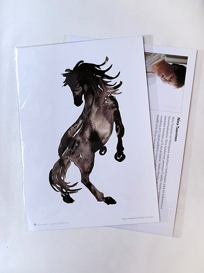 Black Merens - A4 Print