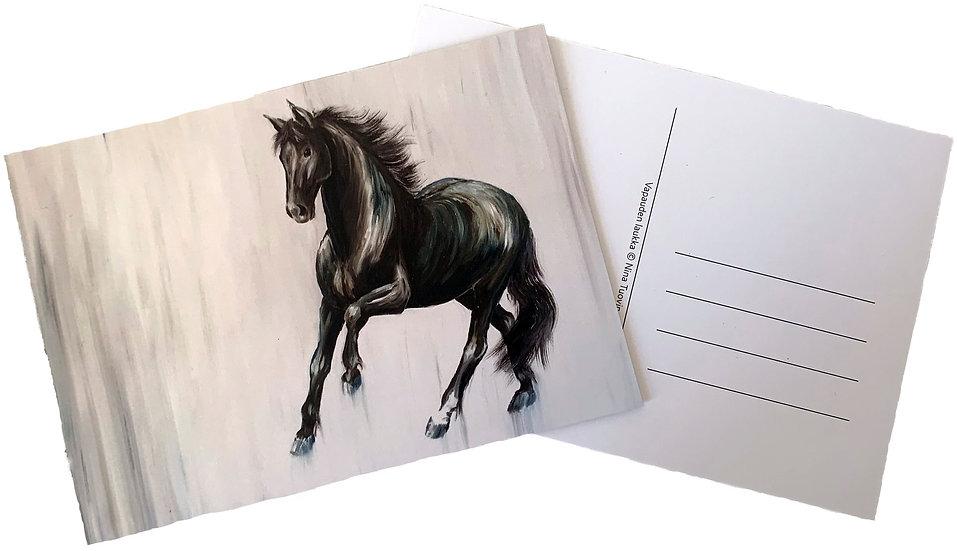 Freedom -postcard
