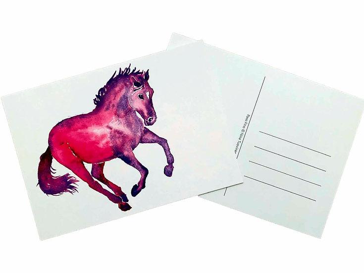 Paso Fino - Postcard