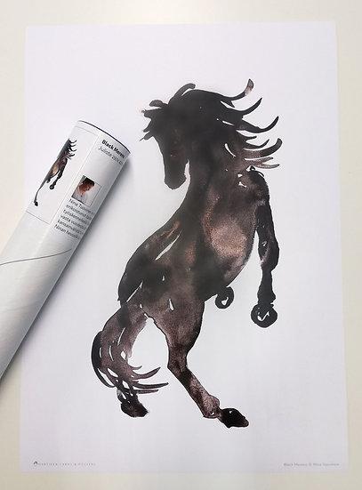 Black Merens - A3 Poster