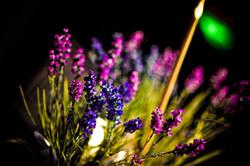 rose and blue lavender