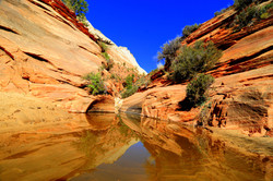 Zion refelctions