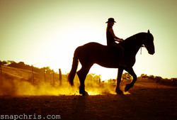 A girl and her horse in the dust and sunlight