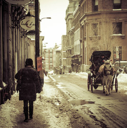 Old Montreal Port _ Horse drawn carriage in the snow