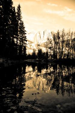 Sepia Reflections
