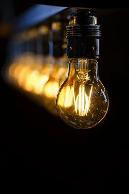 bulbs.webp