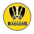 2017 Logo # 1 Badgers.jpg