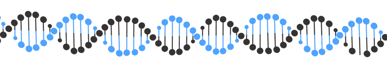 DNA (3).png
