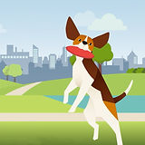 2D Animation of dog with a frisbee