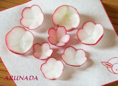 radish of plum flowers