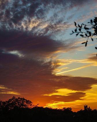 FEATURE - SUNSET doug.jpg