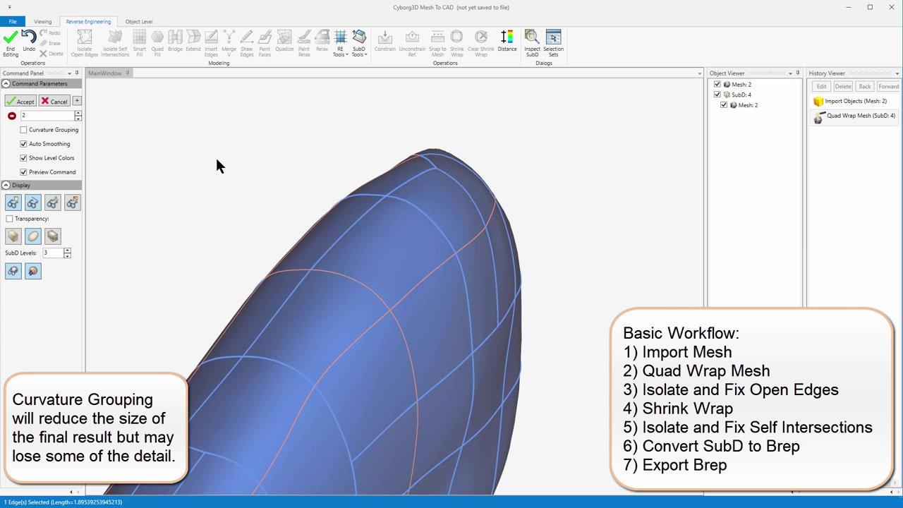 Cygorg3D  3D Scan data conversion to Nurbs