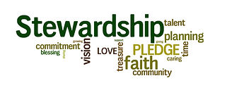 Stewardship-header-960x350.jpg
