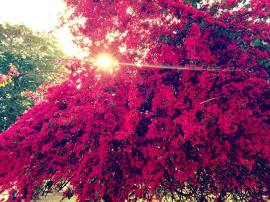 A Photo Walk in Delhi