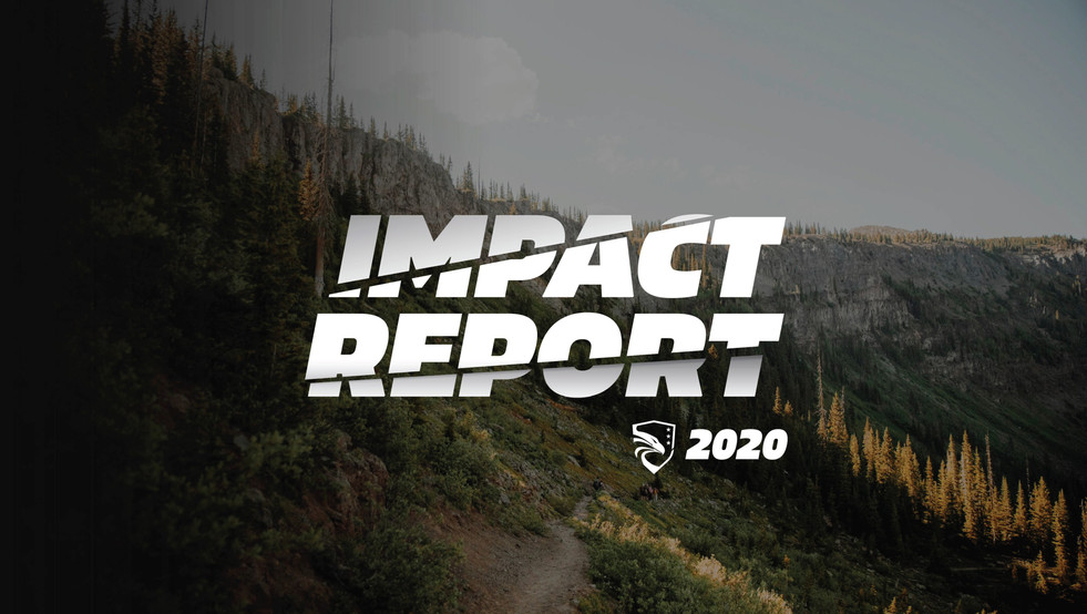 2020_Impact REPORT_Page_01.jpg