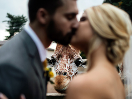 """Want a Wild Wedding? 5 Reasons to Say """"I Do"""" at the Zoo"""