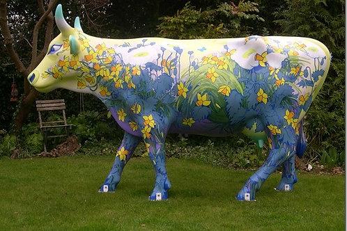 Daffodils Cow