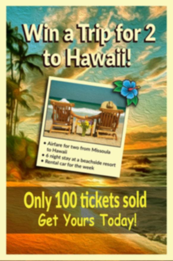 Hawaii Website Drop Down ad #2.jpg