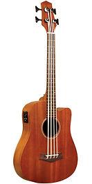 Gold Tone Micro Bass