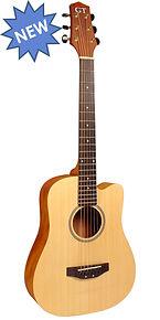 Gold Tone Guitars