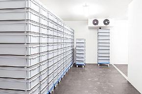 iCE Cold Storage 01.jpg