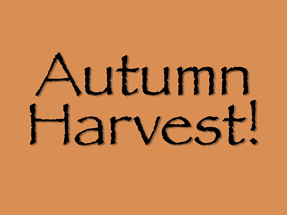 Autumn Harvest Title.jpg