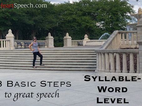 8 Basic Steps to Great Speech Sounds! - Step 3 - Syllable Words
