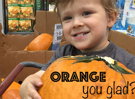"""Orange"" You Glad it's Time for Pumpkins!!"