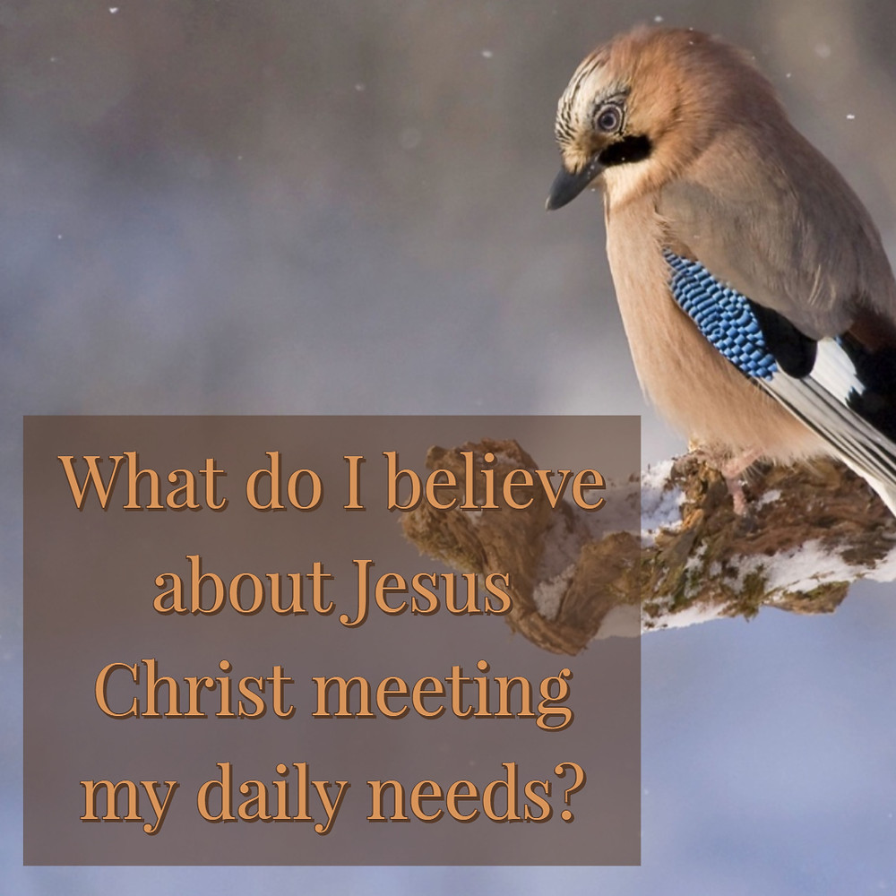What do I believe about Jesus Christ meeting my daily needs?