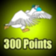 points 300.jpg