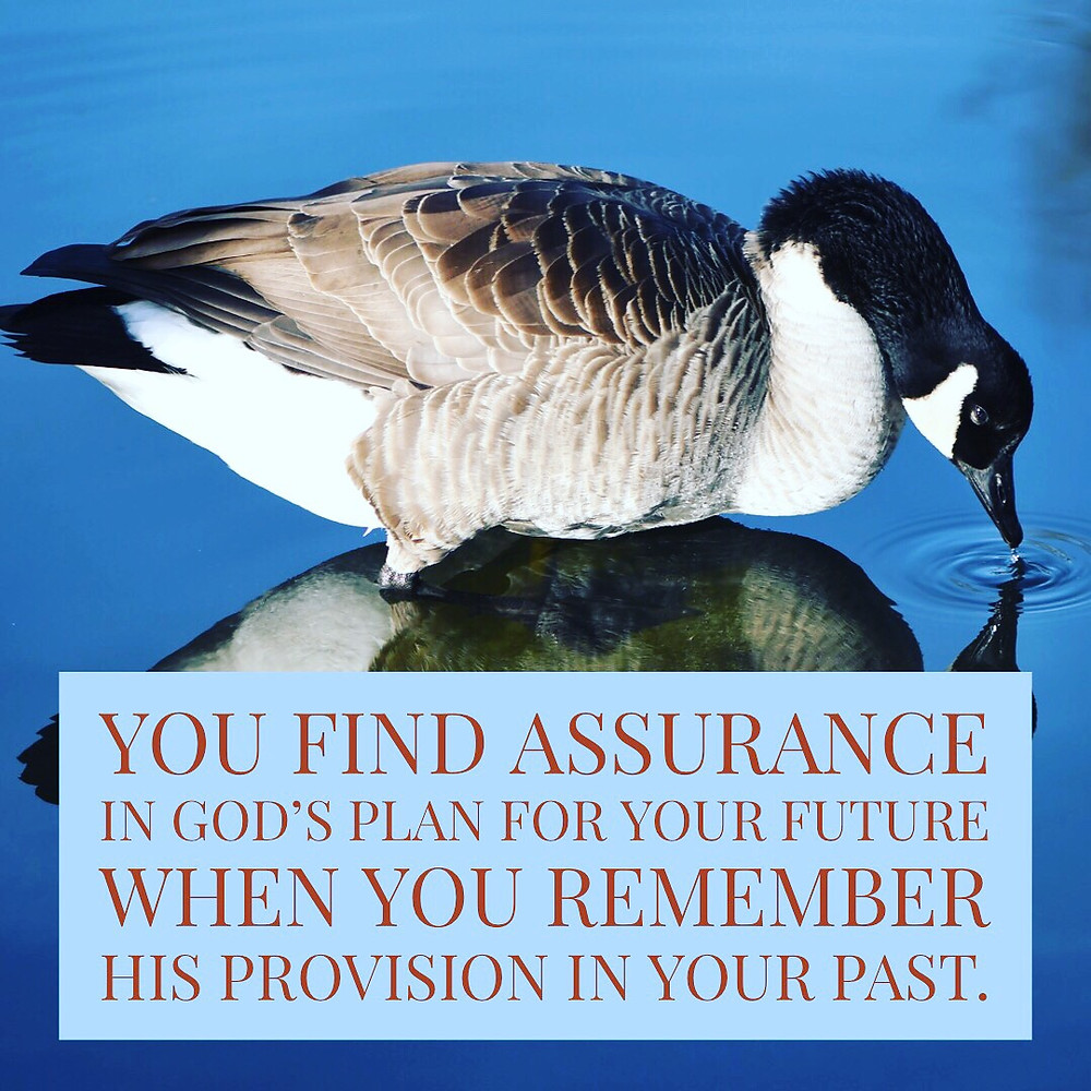 You find assurance in God's plan for your future when you remember His provision in your past.