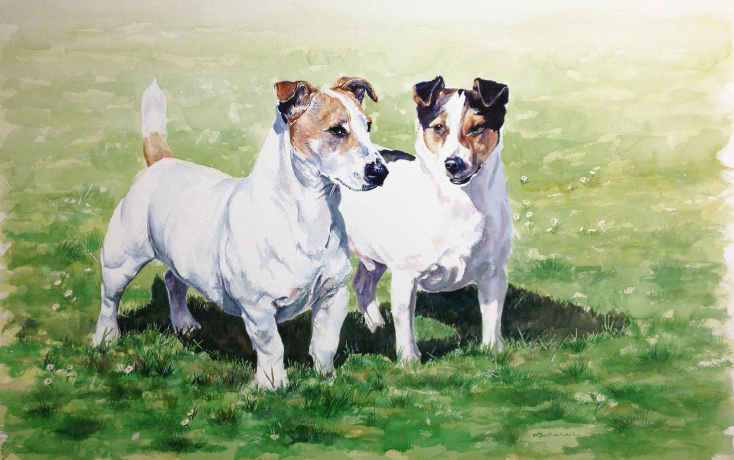 Tolkein Terriers