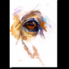 Memory Eye Sparrow