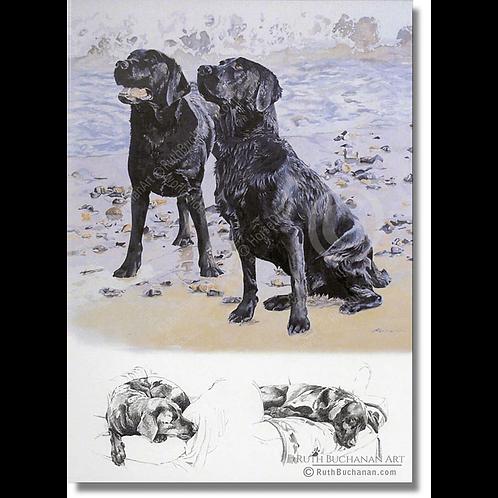 On The Beach - A5 Greetings Card