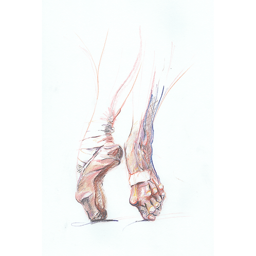Beneath The Swan - original coloured pencil drawing