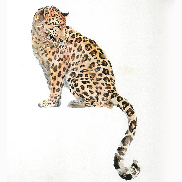 Full Day. £70. Watercolour Leopard with Ruth Buchanan (1)