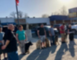 K9 K-9 Training Class. For the best Dog Trainer in Indianapolis Indiana call Off Leash K9 Dog Obedience Training in Indianapolis Indiana. For an expert Dog Trainer in Indianapolis call Off Leash K9 Dog Training in Indianapolis Indiana.