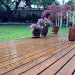 wet-deck-ii.jpg