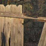 fence-17554_960_720.jpg