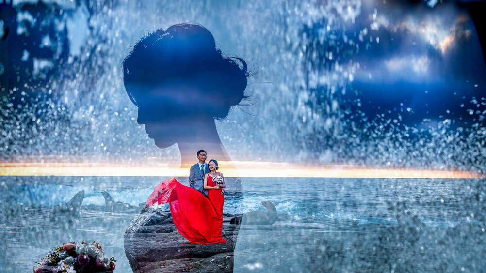 拉霍亚海豹滩婚纱照.jpg
