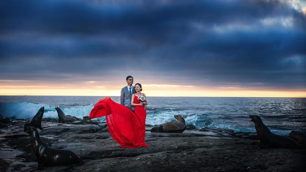 圣地亚哥海豹滩婚纱照.jpg