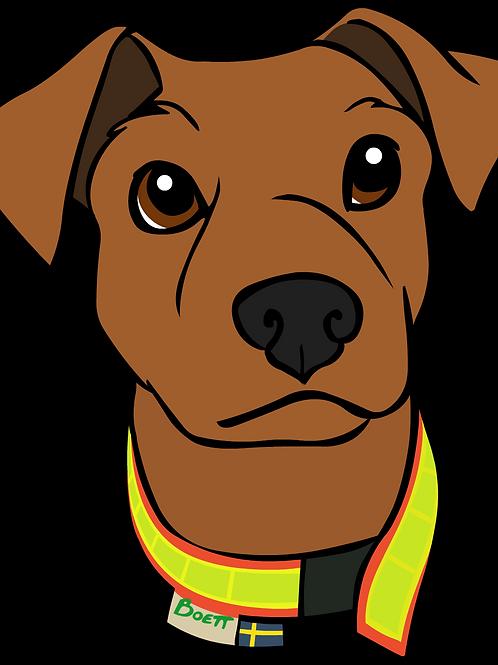 Reflexhalsband, kardborre för liten hund