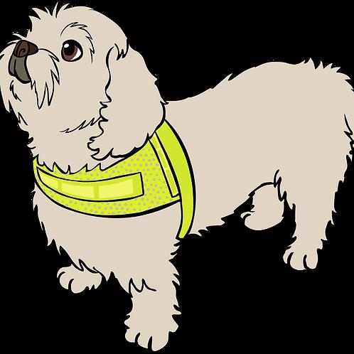 Reflexväst för långhårig hund