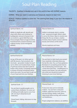 Soul Plan Reading-02.jpg