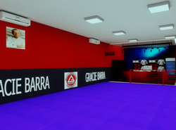 🔸Projeto Academia Gracie Barra