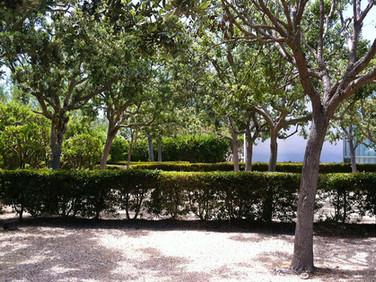 La Jolla Farms