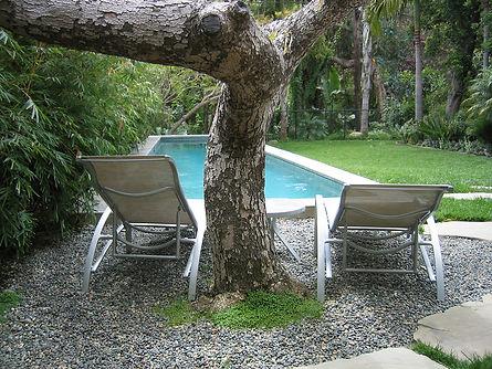 SMonica-pool1-Ryan.jpg