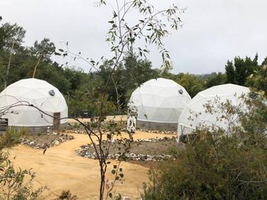 A Future Garden for the Central Coast of California